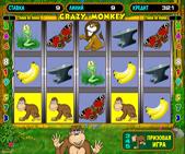 http://igrycasino.com/wp-content/uploads/2018/02/Crazy-Monkey.jpg